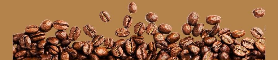 Kaffeefleck-Speisekarte